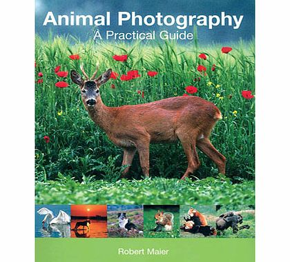 Animal Photography - A Practical Guide