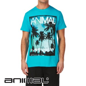 Animal t shirts animal llangian t shirt review for Animal tee shirts online
