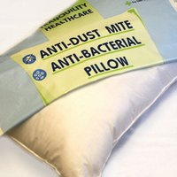 Anti Allergy Dust Mite Proof Pillow