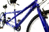 2008 Reflex Timberline Adult Tandem Mountain Bike