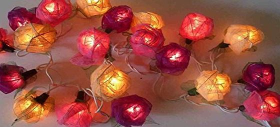 Banlon Old English Pink Red Mixed Colour Rose Fairy Light String