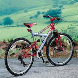 Torsion 21 speed Bicycle