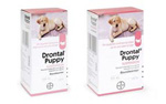 Drontal Puppy Worming Suspension (100ml)