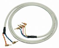 AST200x2 Bi-Wire Speaker Cable - 2 Metres- : 4 at one end 2 at the other