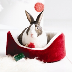 Christmas Bed for Rabbits and Guinea Pigs by Boredom Breaker