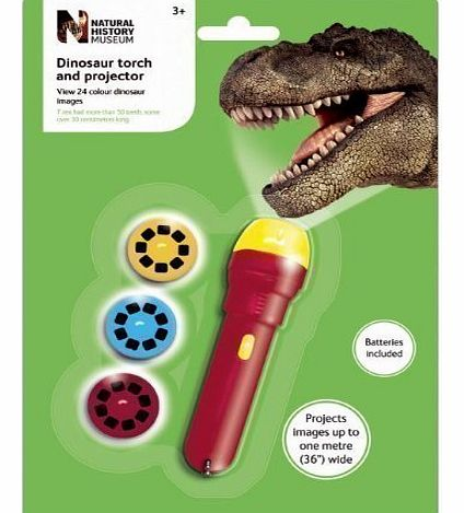Kids Play Natural History Educational Toy Museum Dinosaur Torch & Wall Projector