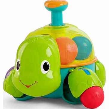 Having a Ball Drop & Spin Turtle
