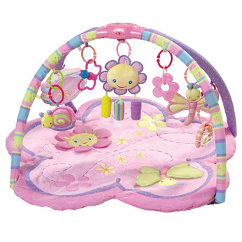 Pretty in Pink Supreme Play Gym