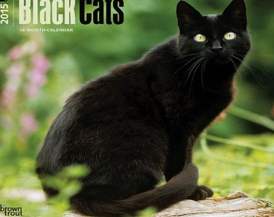 BrownTrout Publishers Black Cats 2015 Wall Calendar