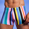 wet paint swim short