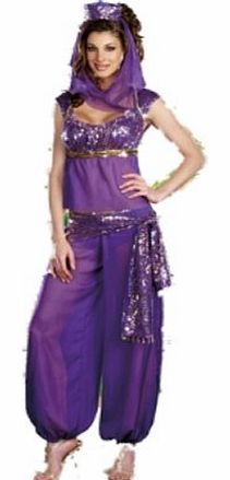 Ladies Belly Dancer Genie Princess Jasmine Aladdin Arabian Nights Adult Fancy Dress Costume (12 - 14, Purple)