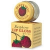 Lips - Lip Gloss  Raspberry  7gr