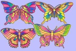 Butterfly - 16inch cutout