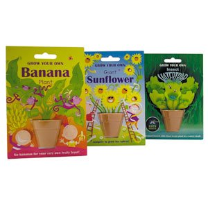 GROW YOUR OWN BANANA PLANT G91