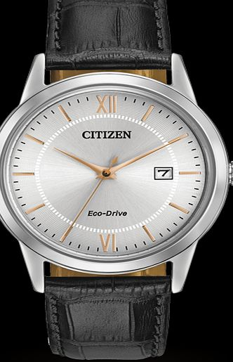 how to read citizen golf watch