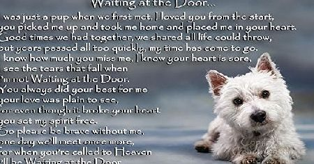 CountryStyle Gifts West Highland White Terrier Westie bereavement pet dog loss memorial Flexible Fridge Magnet - Waiting at the Door