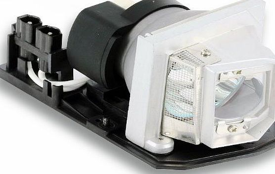 CTLAMP Replacement Projector Lamp/Bulb with Generic housing EC.JBU00.001 for ACER X110P/X1161P/X1261P/H110P/X1161PA/X1161N