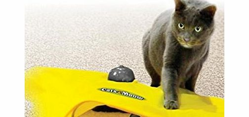 electronic undercover Mouse cat toy for cats of all ages, fun exercise,your cats cant resist