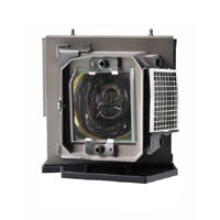 4210X Replacement Projector Lamp