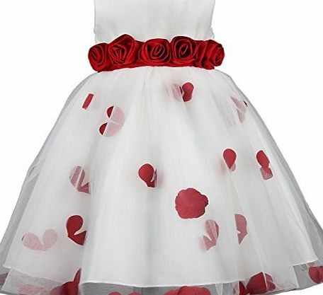discoball Girls Flower Formal Wedding Bridesmaid Party Christening Children Clothing Lace Princess Dress Kids Baby Clothes age 2-11 years(10-11years,red)