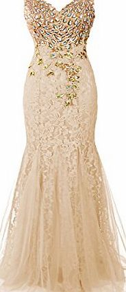 Dresstells Long Lace Mermaid Prom Dress with Appliques Wedding Dress Evening Party Wear Champagne Size 10