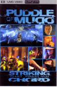 Puddle Of Mudd Striking That Familiar Chord PSP Movie