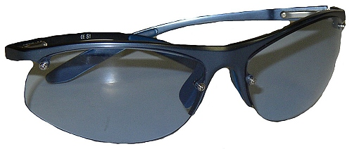 BMW Williams Performance Sunglasses