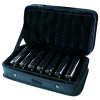 Blues Harmonica Set