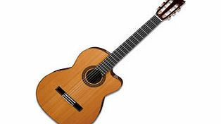 G300 Classical Electro Acoustic Guitar
