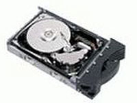 Hard drive - 73.4 GB - hot-swap - 3.5 - SAS - 15000 rpm - buffer: 8 MB - Express Seller