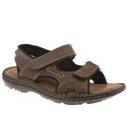 Male Andes Sporty Strap Leather Upper in Dark Brown