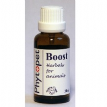 Phyto Boost - Lethargy 30Ml 3 Bottles