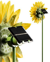 Nigel`s Eco Store Solar Powered Spinning Sunflower - for a little
