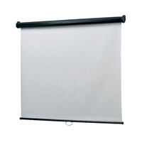 1500mm Projection Wall Screen for Dell