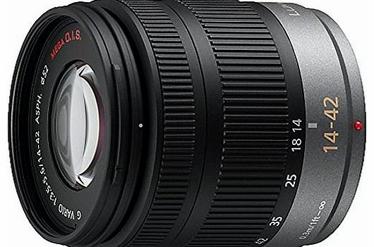 Micro Four Thirds 14-42mm Zoom Lens (35mm Equivalent 28-84mm)