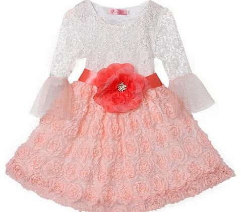 Pettigirl Sweet Lace Rose Kids Fashion Wedding Dress Dinner Clothes For 3 Years