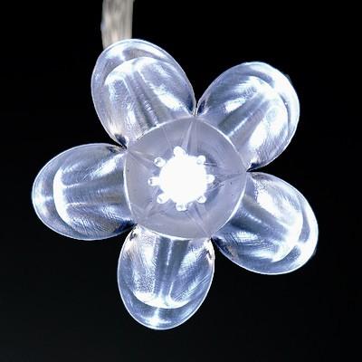 Premier christmas lights christmas gifts reviews for White twinkle christmas lights