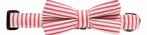 Pink Stripe Bow Tie Dog Collar
