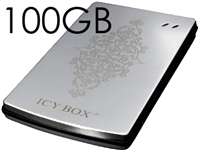 100GB USB2.0 2.5 Ext Stainless Steel Hard Drive