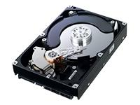 1TB hard disk drive Spinpoint F1 RAID Class SATA II 300 7200rpm 32MB cache oem HE103UJ (Manufacturer