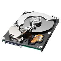 750GB Spinpoint F1 SATA II 300 7200rpm 32MB Cache Hard Disk Drive oem (Manufacturer` 3yr Warranty)