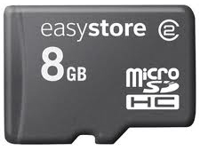 SanDisk EasyStore Micro SDHC (Class 2) - 8GB