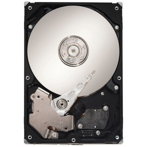 Seagate Barracuda ST310005N1D1AS-RK 1 TB