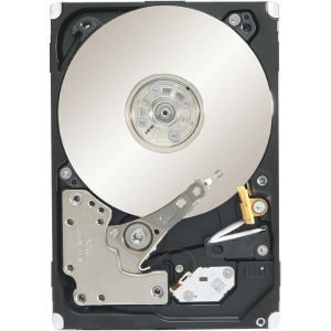 Seagate Constellation.2 ST9250610NS 250 GB