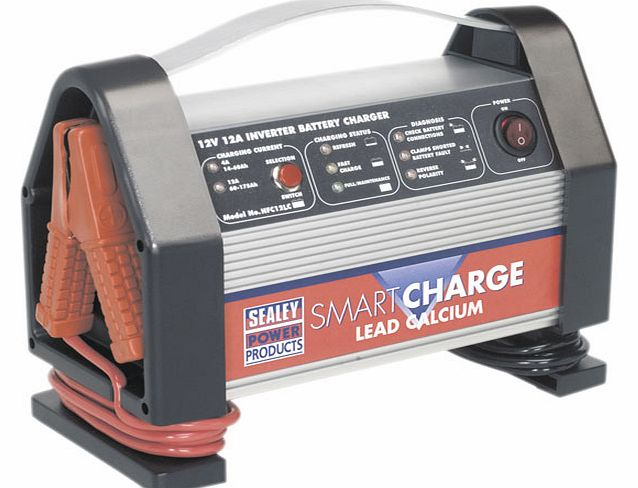 Smartcharge Inverter Battery Charger Lead