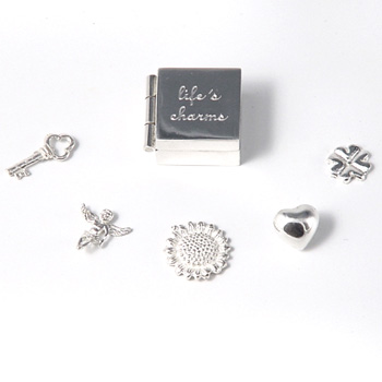 Lifeand#39;s Charms Box
