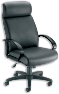 Sonix Ithica Armchair Back H700mm