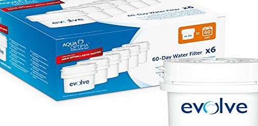 Strix Ltd Aqua Optima EVD602 Evolve 60-day Water Filter, also fits Brita* Maxtra*,6 pack - 1 years supply