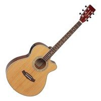 Discovery DBTSFCE Acoustic Guitar