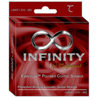 Infinity By Tanglewood 12-53 Acoustic Guitar